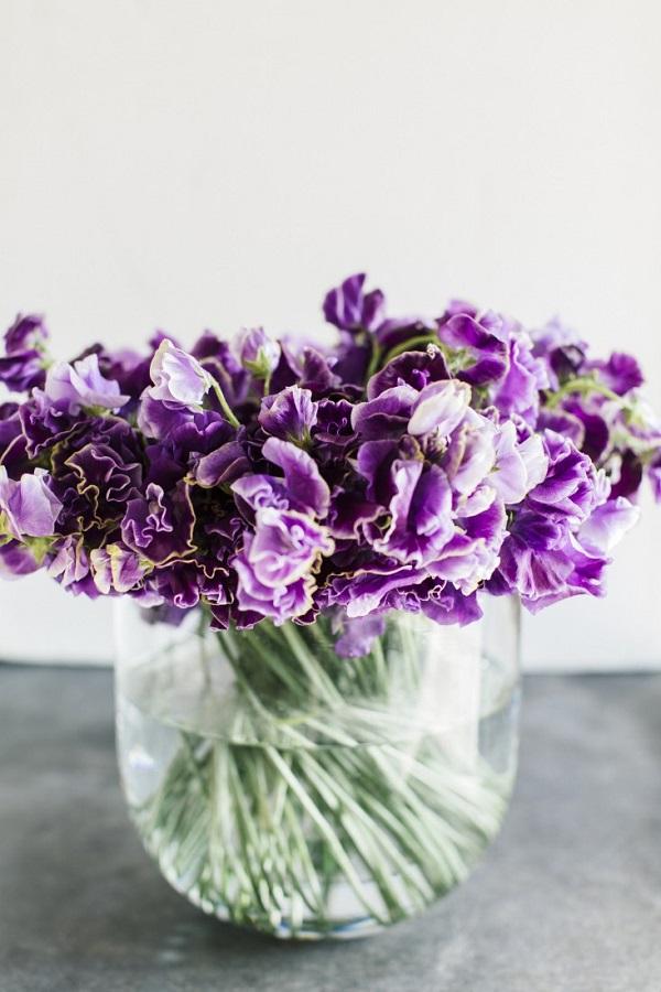 photo credit: gardenista