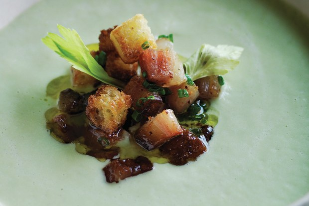 celery-veloute-with-bacon-brioche-croutons_20092016